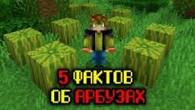 5 ФАКТОВ ОБ АРБУЗАХ – МАЙНКРАФТ
